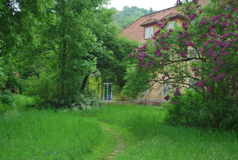 Garten Biologiezentrum