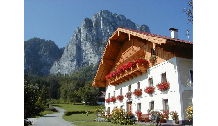 Blick auf das Haus, im Hintergrund die Berge. (© Schachl)