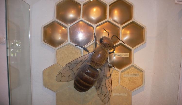 Bienenmuseum (© Flora Fellner)