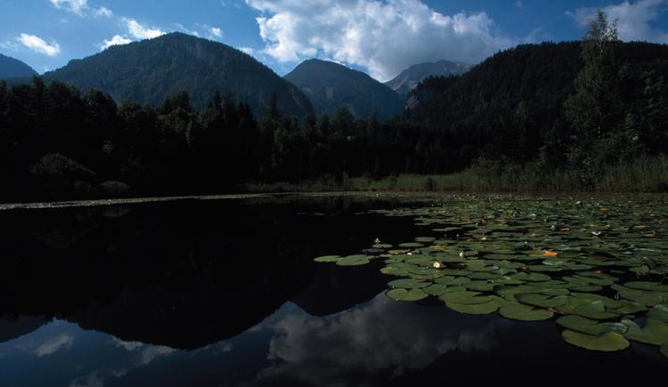 Roßleithen bei Windischgarsten: Gleinkersee mit Sengsengebirge