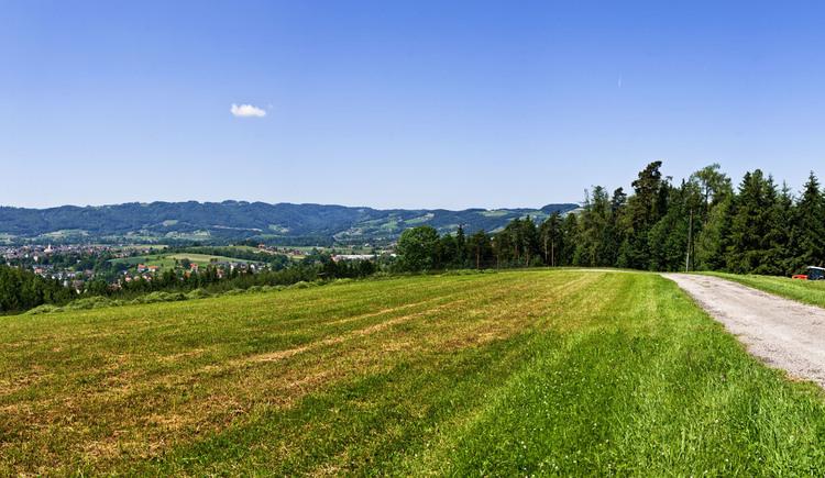 Panoramablick Oberlandshaag, Feldkirchen an der Donau