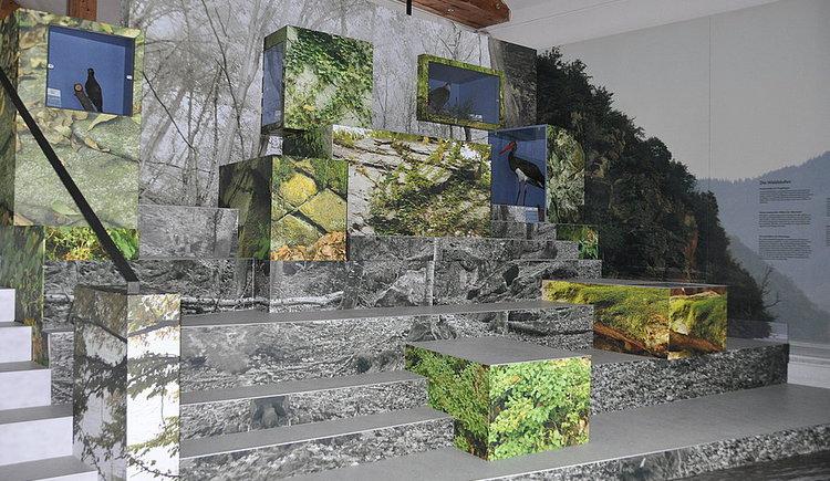 Ausstellung, Donau, Geschichte, Schiffahrt, Kaj\u00fcte, Natur. (© tvezell)