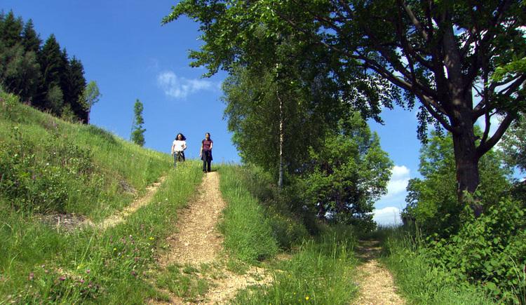 Wandern am Opferschalenweg