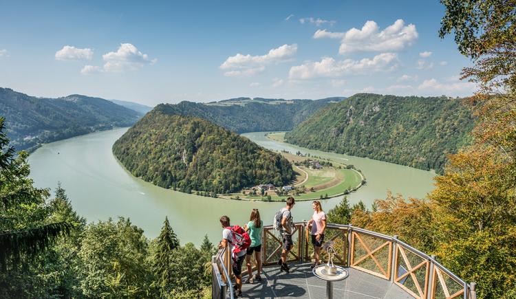 Schlögener Blick - Aussichtspunkt auf die Schlögener Donauschlinge
