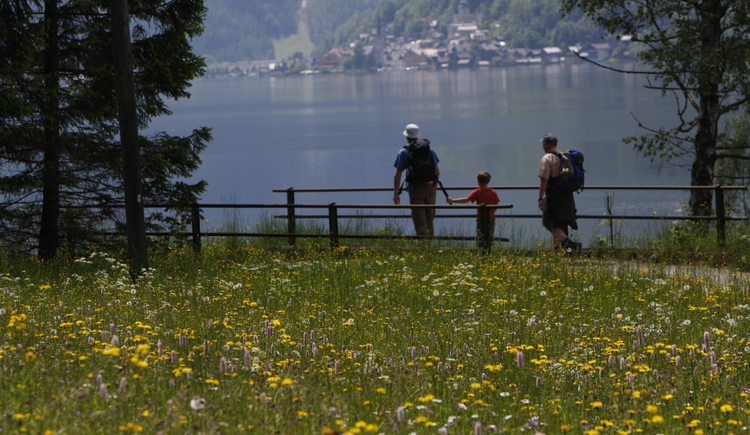 The east bank Trail with the view to Hallstatt. (© Viorel Muteanu)