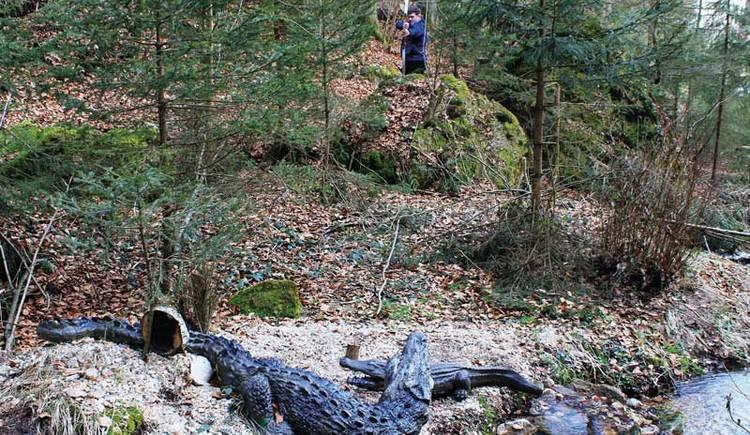 Ein Schütze zielt auf ein Krokodil im 3D Bogenparcours in Windhaag bei Perg. (© Leader-Region Strudengau)
