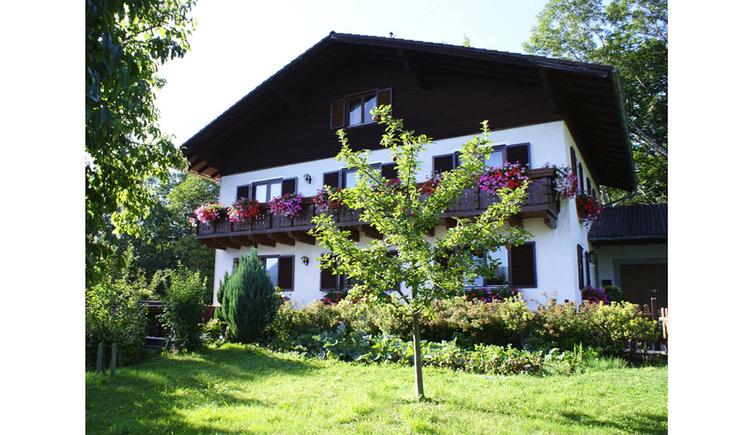 Blick von der Wiese auf das Haus mit Balkon und Blumen, im Vordergrund ein Baum