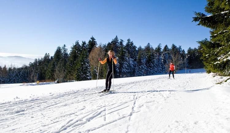 Traumhafte Loipen im Nordischen Zentrum Böhmerwald. Skating- und Parallelspur. (© OÖ.Tourismus/Weissenbrunner)