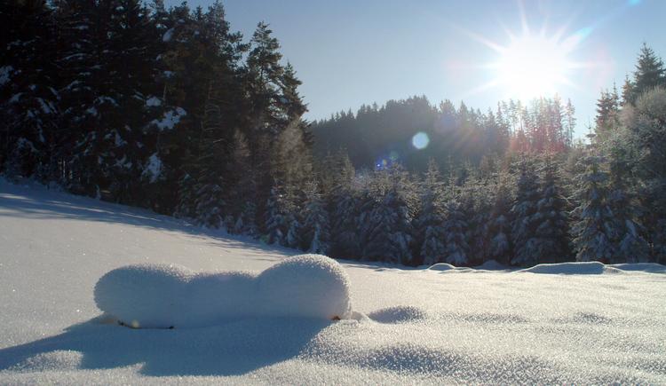 Winterbild (© Landhotel Hoftaverne Atzmüller)