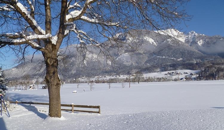Panorama Winter. (© Kloibergütl)