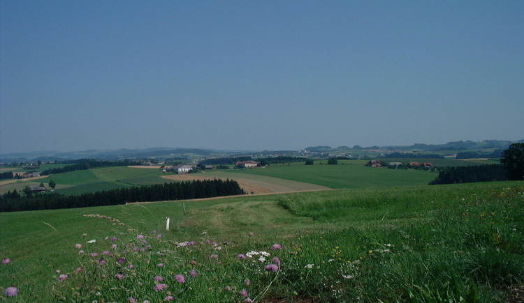 Sicht Pehersdorf (© Gemeindeamt St. Ulrich)