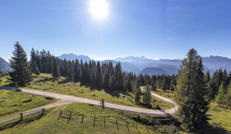 Die Iglmoos Alm liegt wunderschön in der Natur mit Blick auf das Dachstein Gebirge. (© WOM Medien GmbH Andreas Meyer)
