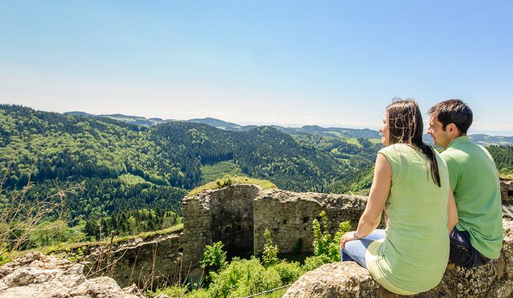 Traumhafte Aussicht vom Ruttenstein - Turm. (© Dieter Hawlan)