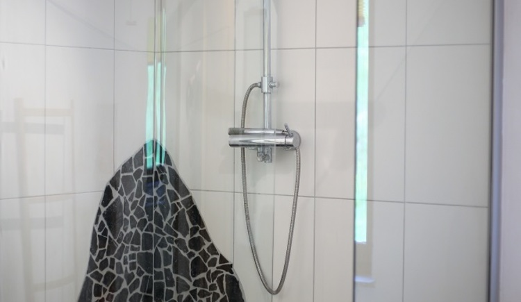 Schöne und große Dusche im Apartment Pepi.