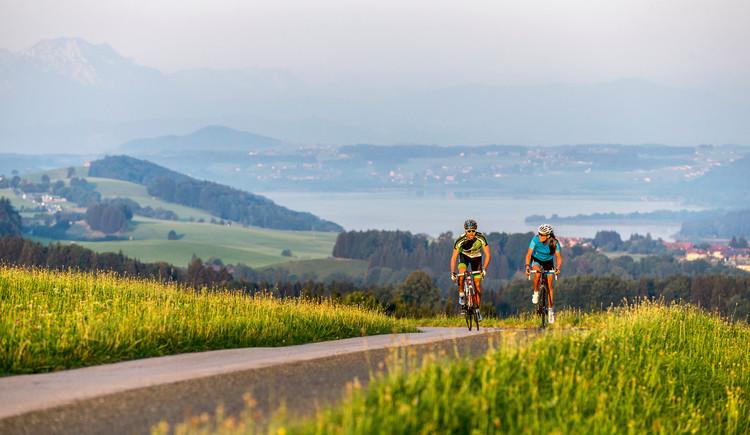 Rennrad fahren im Salzburger Seenland (© SalzburgerLand Tourismus)