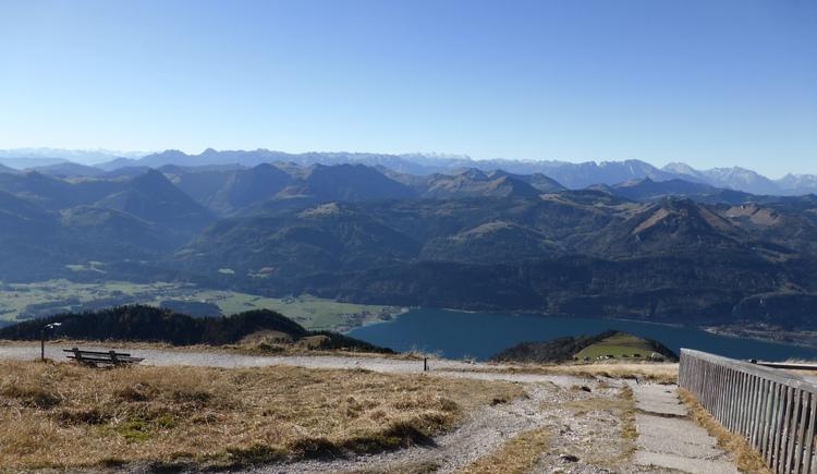 Ausblick auf den Wolfgangsee. (© Maria Eisl)