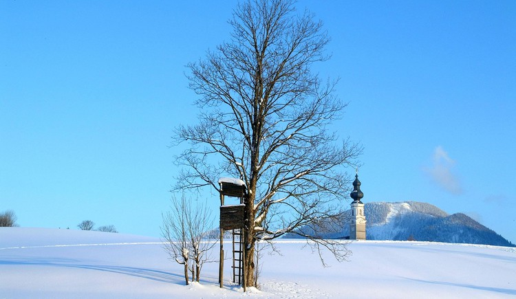 Faistenau with a snowy winter landscape (© Tourismusverband Faistenau)