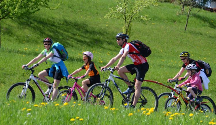 Foto zeigt Familie beim Radfahren am Attersee im Salzkammergut. (© Wolfgang Spitzbart/TVB Attersee-Salzkammergut)