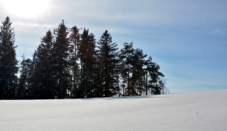 Winterlandschaft (© Gemeinde St. Johann am Wimberg)