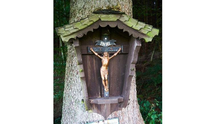 Blick auf das Kreuz auf einem Baum befestigt