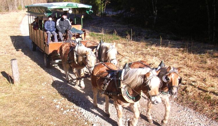Kutschenfahrten ins Reichraminger Hintergebirge