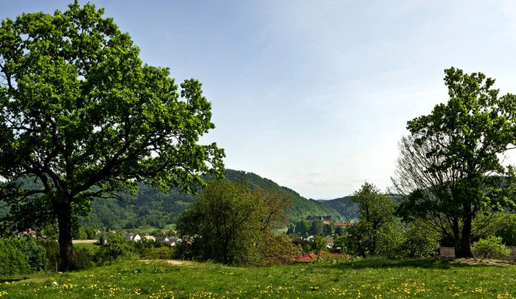 Panoramablick Grein Mühlberg