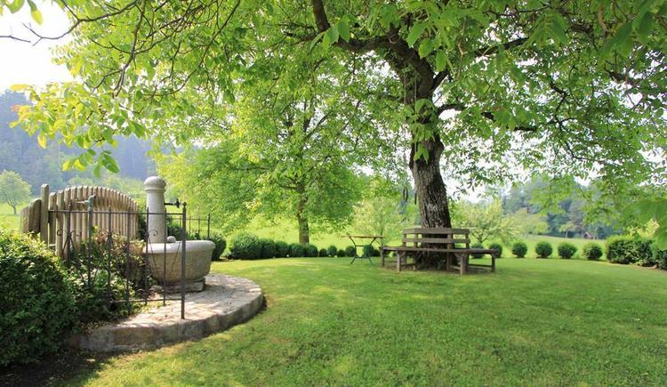 Entspannung unter den Bäumen (© Bammer im Herndlberg)
