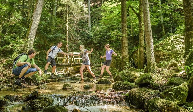Donausteig Bad Kreuzen Wolfsschlucht. (© WGD Donau Oberösterreich Tourismus GmbH-Hochhauser)