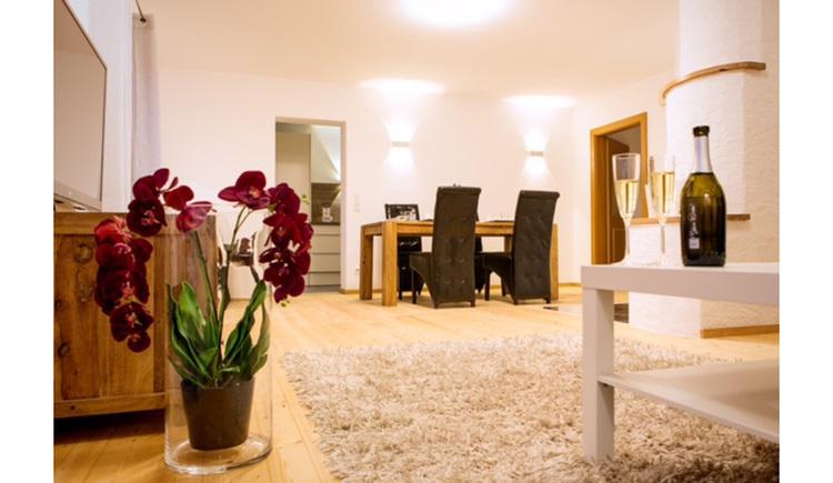 im Hintergrund Tisch und Stühle, seitlich eine Pflanze