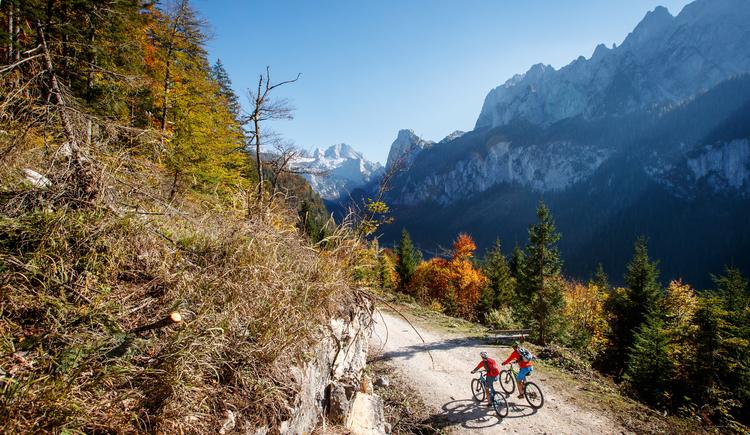 Eines der tollsten Panoramen die Oberösterreich seinen Mountainbikern zu bieten hat - Der Dachstein beim Gosausee. (© bikeboard.at Erwin Haiden)