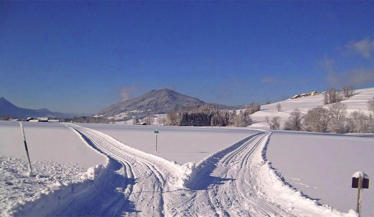 cross-country ski run in Oberaschauer, mountains in the background