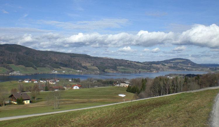 Tannenweg. (© www.mondsee.at)