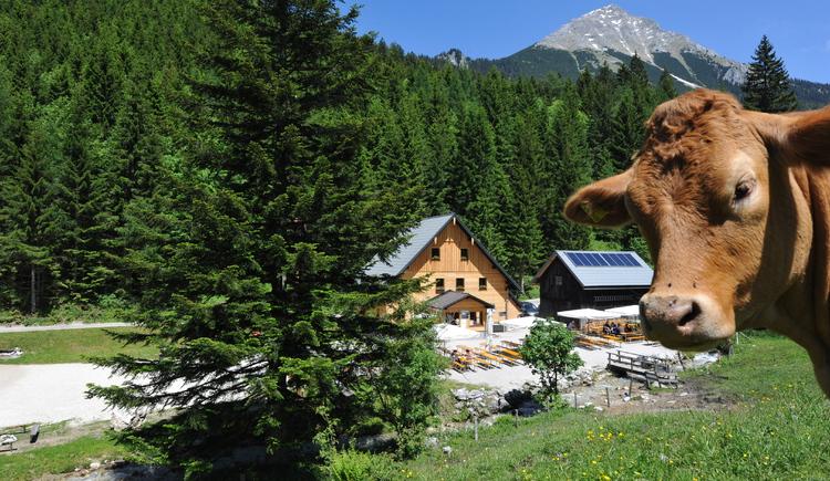 Bosruckhütte (© Franz Salfinger)
