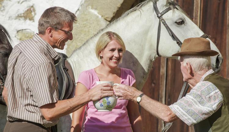 Pferderast (© OÖ Tourismus/Erber)