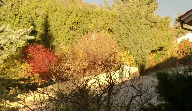 Appartement Heuberg- Herbststimmung (© Anni Eibl)