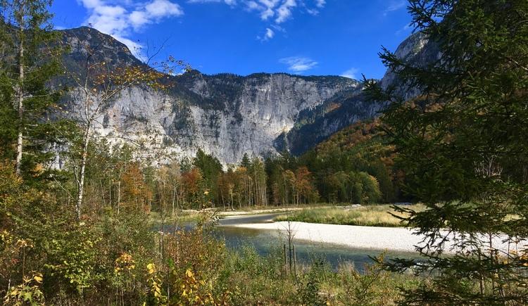 A photo of the beautiful landscape along the Traun on the hiking trail no. 6. (© Ferienregion Dachstein Salzkammergut)