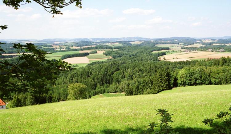 Allerheiligen im Mühlkreis Landschaftsaufnahme. (© TTG Tourismus Technologie)