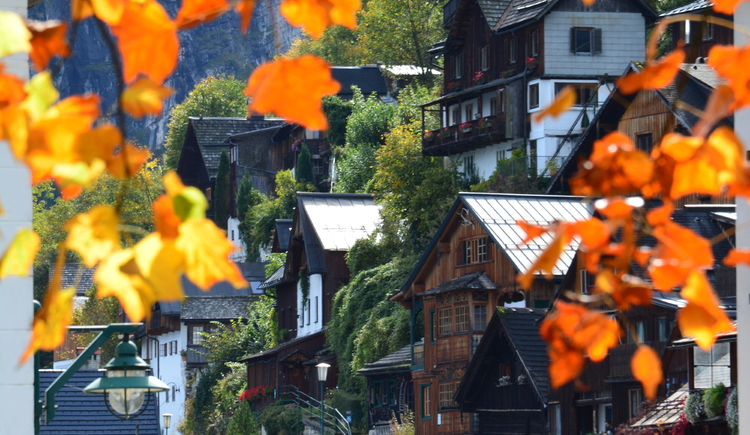 Hallstatt (© Kieneswenger)