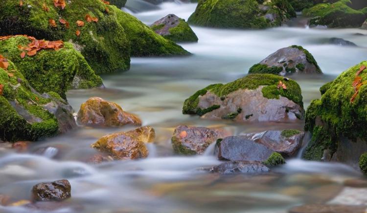 Starten Sie doch eine Wanderung zu den Wasserfällen Waldbachstrub.
