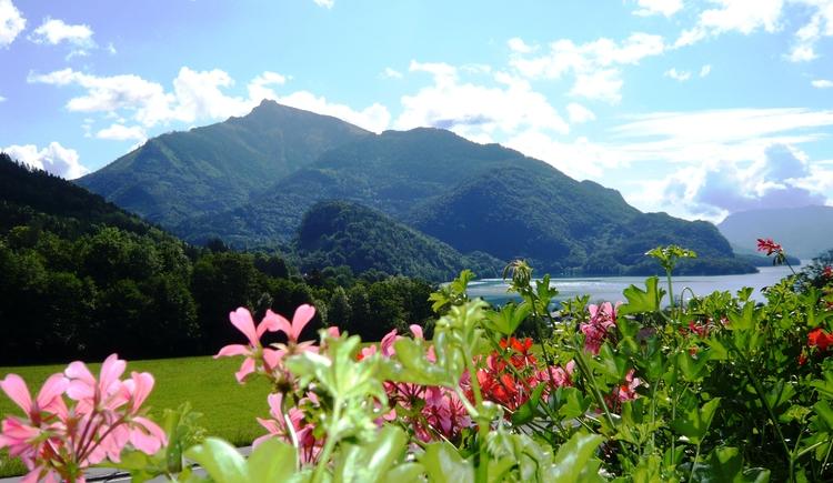 Pension Seeblick, Garten