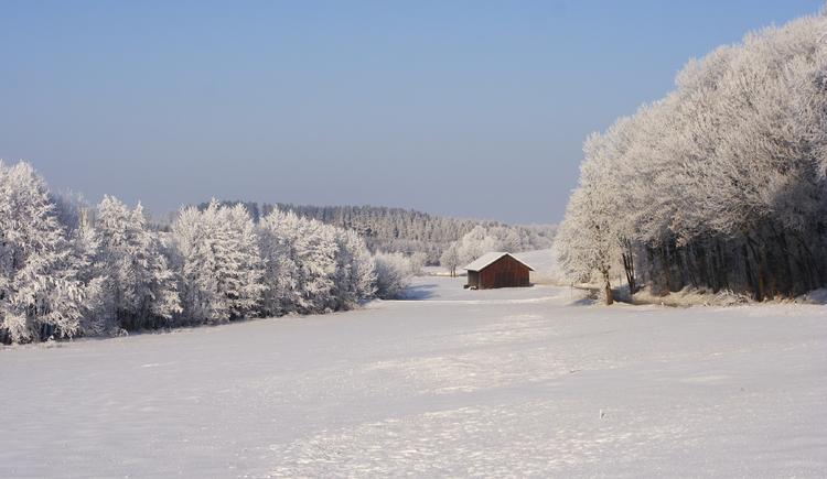 Winterlandschaft (© Innviertel Tourismus/Mühlleitner)