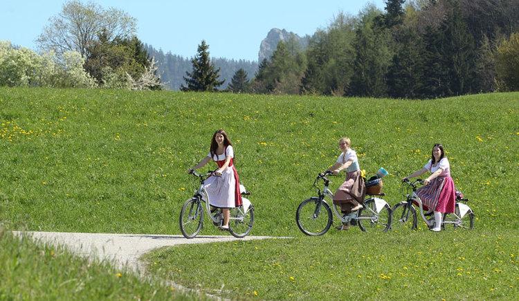 E-Bike am Fuschlsee. (© www.fuschlseeregion.com)