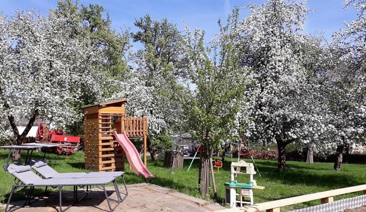 Im großen Garten (© Privat)