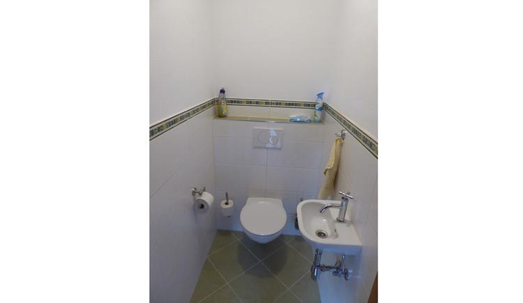 The Toilet with washhandbassin