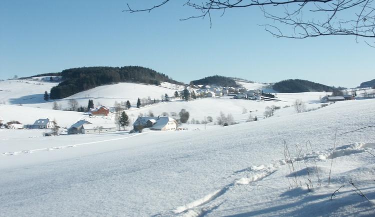Nebelberg im Winter (© DI Josef Jungwirth)