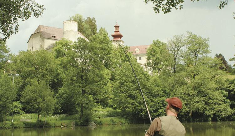 Angeln im Schlossteich Waldenfels
