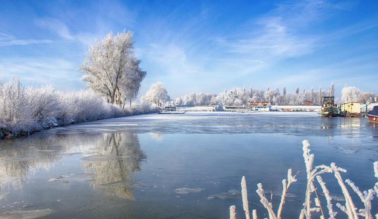 Au an der Donau, Blick in den Hafen. (© Zobl Michael)