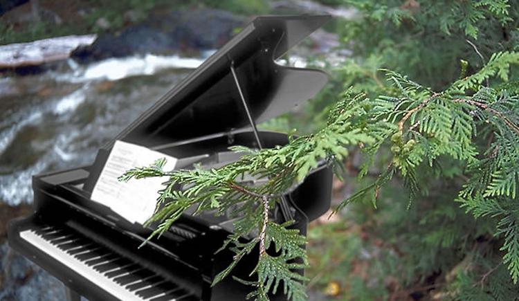 piano in a wood. (© Peter Peregi)