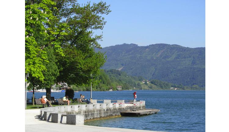 Blick auf die Promenade, seitlich ein Baum, See, im Hintergrund die Berge