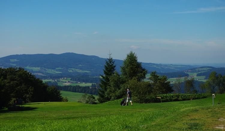 Am Schmetterlingswanderweg (© TV Pfarrkirchen)